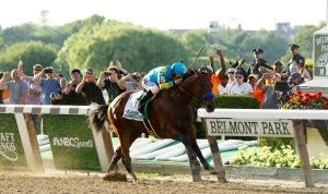 American Pharoah wins the 2015 Belmont Stakes. MIKE LIZZI/WIKIMEDIA COMMONS