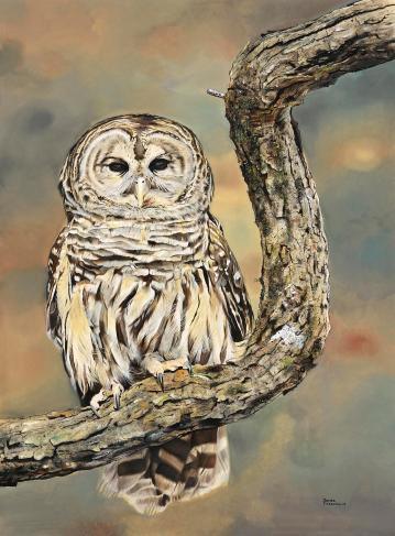 fiorentino.owl